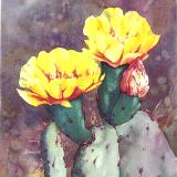 Sentinel Blossoms